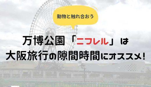 万博公園「ニフレル」は大阪旅行の隙間時間にオススメ!