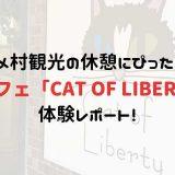 猫カフェ「CAT OF LIBERTY」体験レポート!
