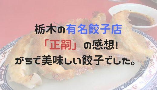 栃木の有名餃子店「正嗣」の感想!宇都宮で餃子を楽しむならココへ!