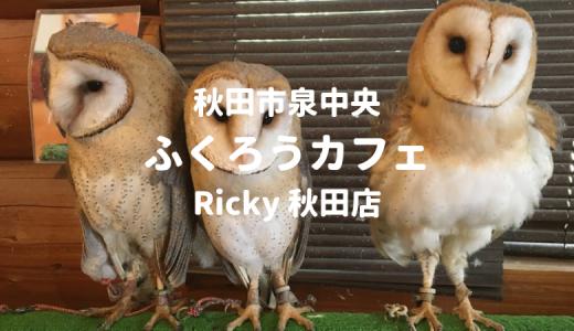 【秋田市】ふくろうカフェ「Ricky」は動物好きにオススメ!体験レポート